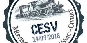 Logo créé pour le rallye du CESV