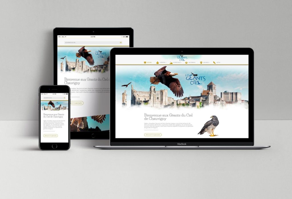 Présentation site geants-du-ciel - spectacle d'oiseaux en vol libre